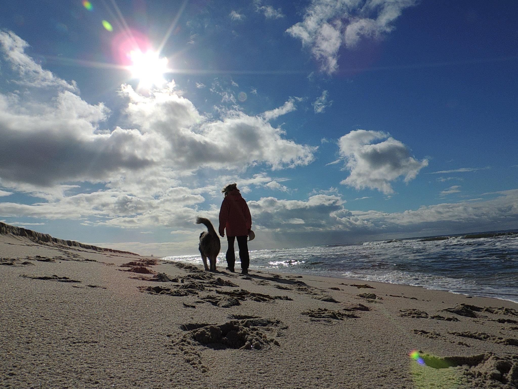 © Hans G. Lehmann | Strandspaziergang mit Hund,  List auf der Insel Sylt