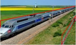grillage longeant une ligne ferroviaire grande vitesse pouvant poser problème aux déplacements des grands animaux comme le cerf