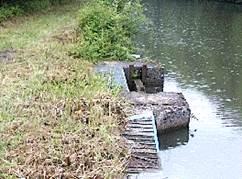 aménagement d'escaliers sur la berge d'un canal permettant aux animaux essayant de le traverser de remonter sur l'autre rive