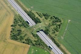passage à faune aménagé pour permettre le passage d'animaux au dessus d'une autoroute