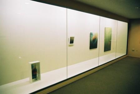 「NAGANO ART展」(長野/ガレリア表参道) 2009