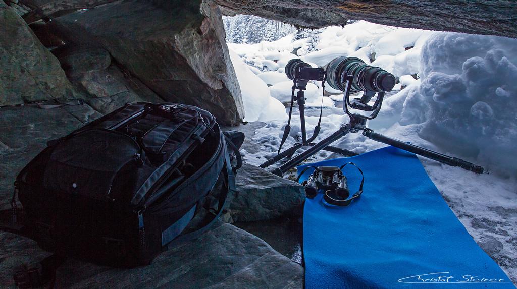 Sony NEX mit 70-200 für Videos, und 600mm Teleobjektiv an meiner Canon 1D