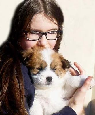 Hund für Kinder Rasse