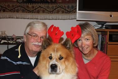 Hund für Senioren