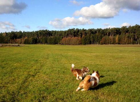 ...und ein wunderbares Wetter im November.