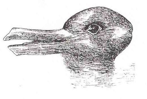 Ente oder Kaninchen oder Hase? Kuhn verwendete diese bekannte optische Illusion von Jastrow, um zu veranschaulichen, dass sich bei wissenschaftlichen Revolutionen die Wahrnehmung der Wissenschaftler radikal ändert.