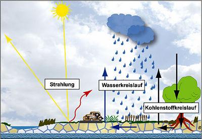 Wichtige Beziehungen zwischen Boden und Klima
