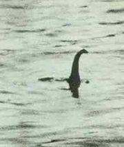 Angebliches Foto von Nessie, in Wirklichkeit ein kleines Modell, welches von Christian Spurling auf einem Spielzeug-U-Boot befestigt wurde