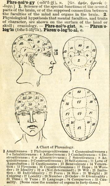 Schon in der Phrenologie wurden geistige Fähigkeiten einzelnen Schädelregionen und damit indirekt bestimmten Gehirnstrukturen zugeordnet.