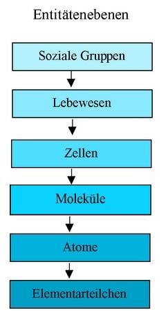 Putnam-Oppenheim-Schema