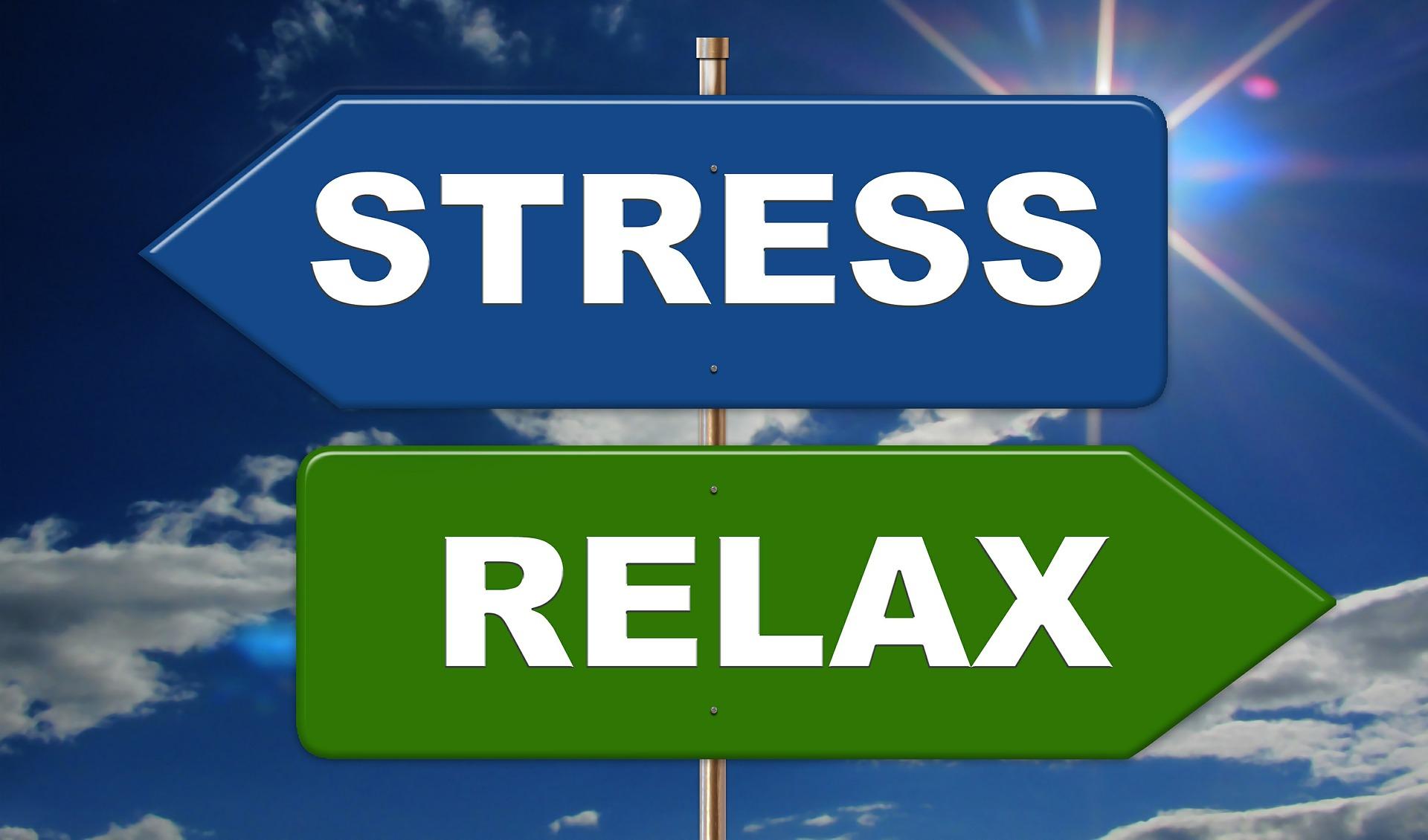 [Zoom sur] - le stress