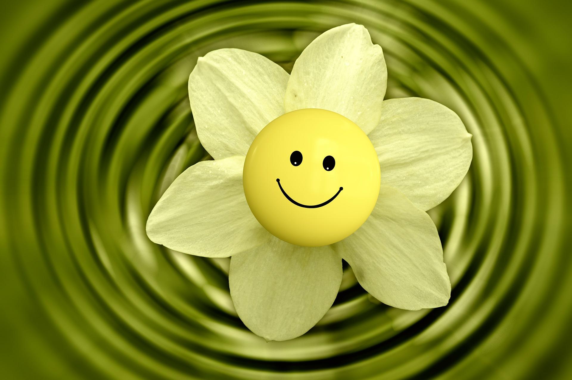 [Citation] - Le sourire (Gandhi)