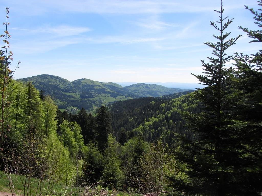 Blick vom Stockberg nach Süden   ©  Hartmut Hermanns