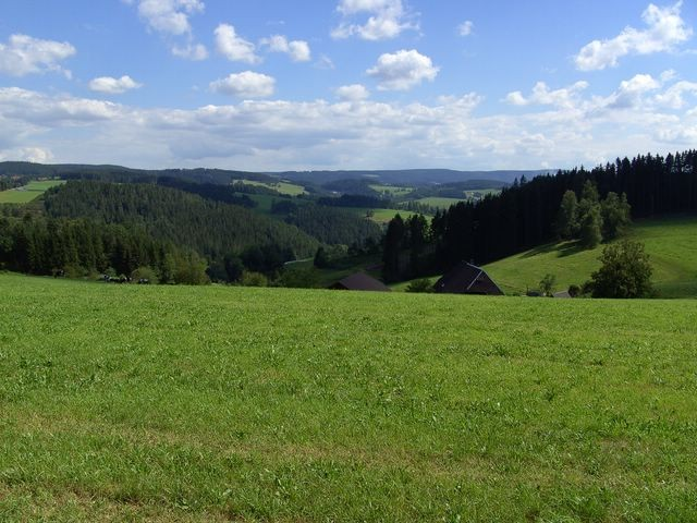Blick nach S zum Stöcklewaldturm    © Hartmut Hermanns