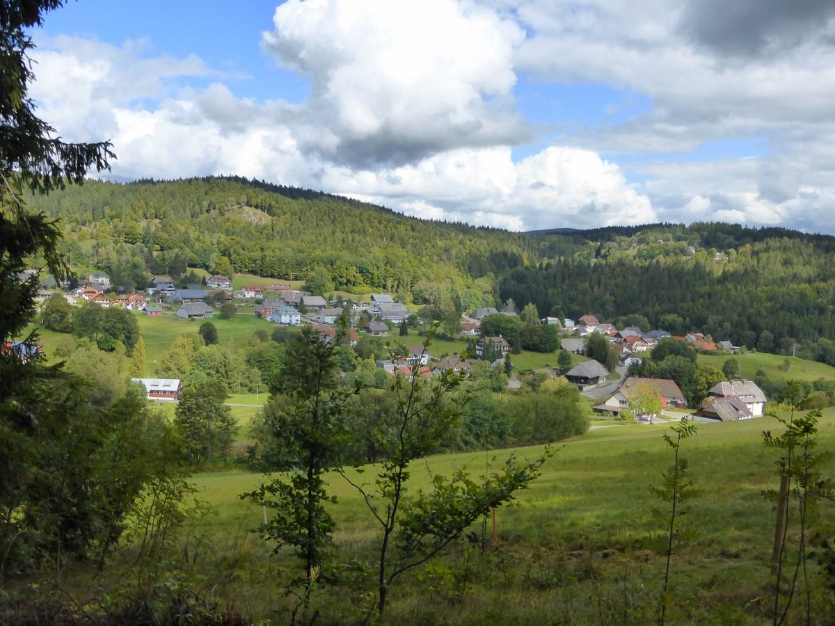 Blick vom Neufeld auf Wittenschwand  © Hartmut Hermanns