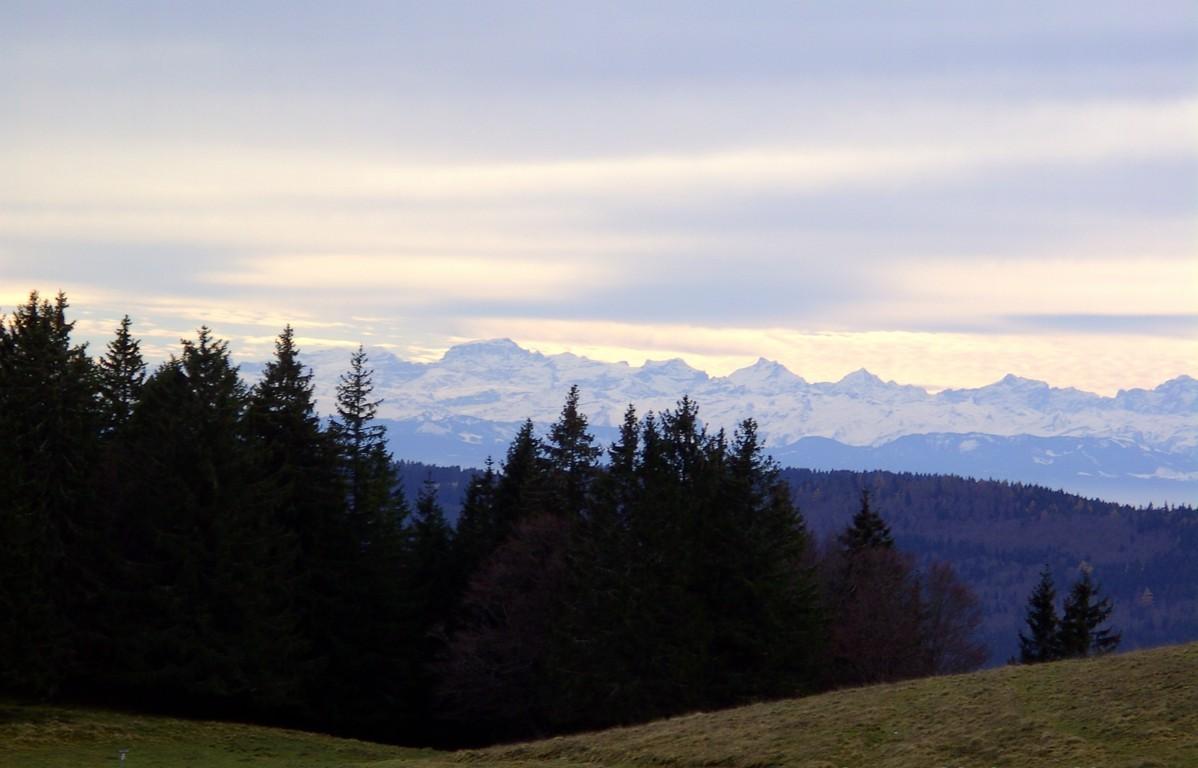 Alpenblick   © Hartmut Hermanns