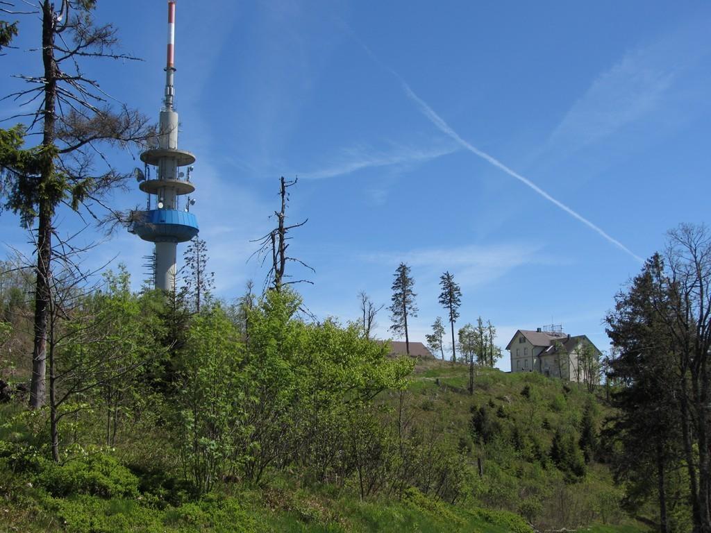 Gipfel des Hochblauen (noch ohne Windräder)   ©  Hartmut Hermanns