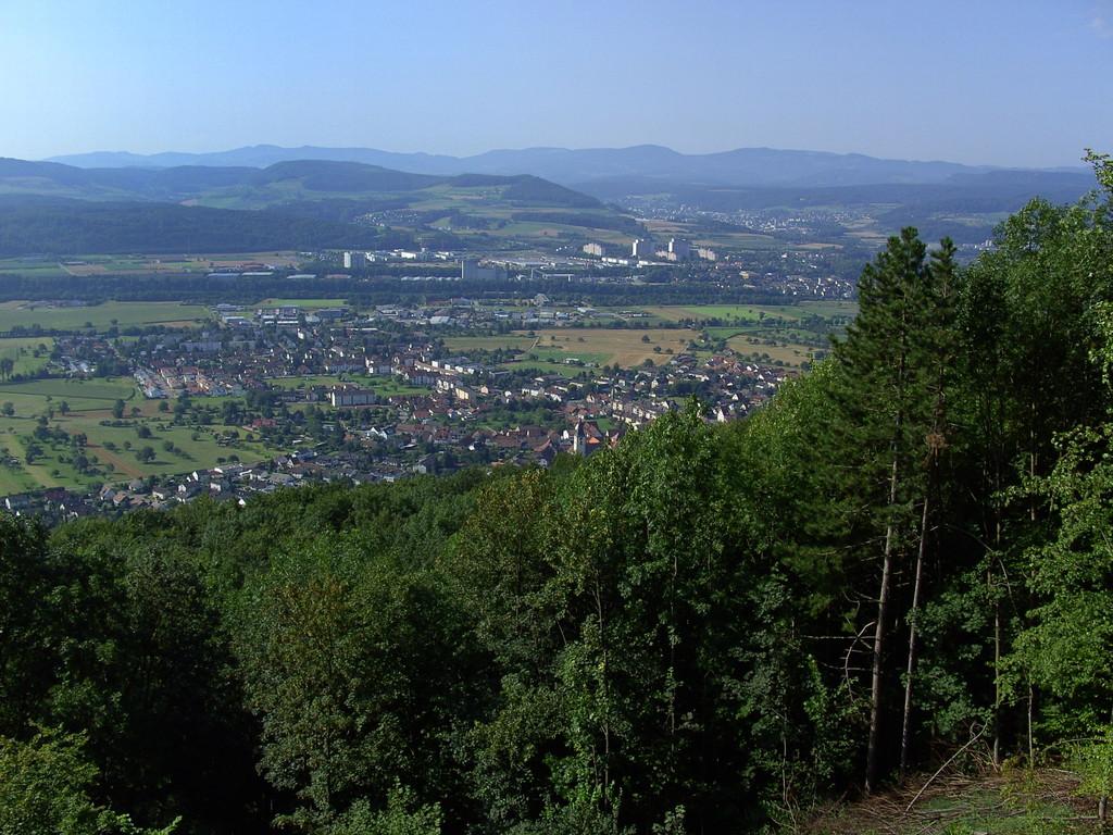Blick ins Rheintal    © Hartmut Hermanns