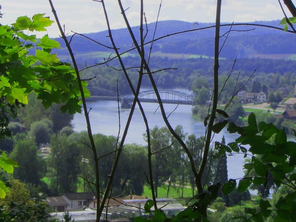 Blick auf den Rhein  © Hartmut Hermanns