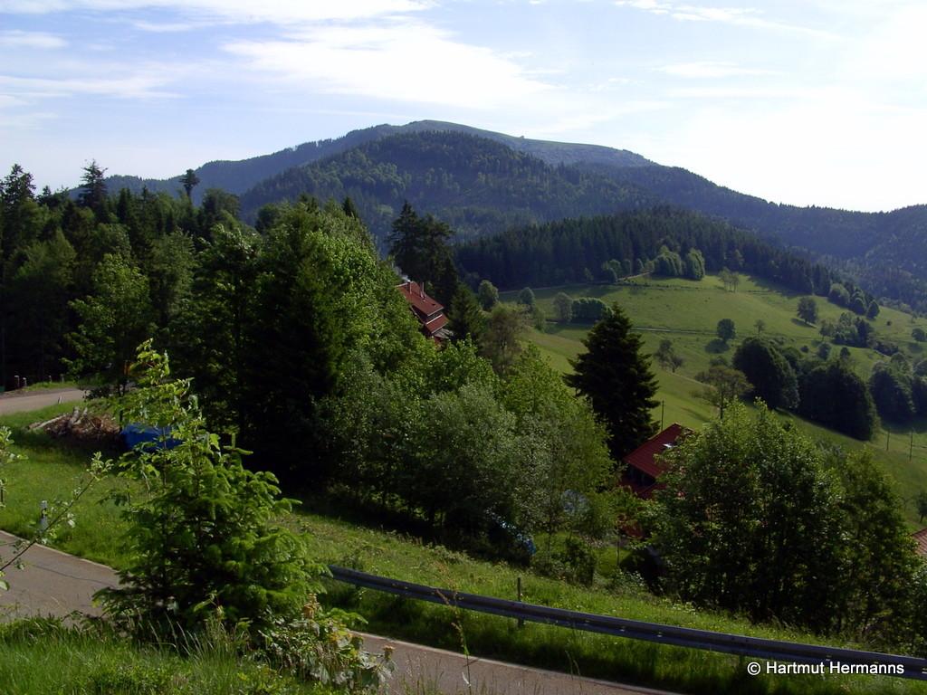 Belchen und Haldenhof