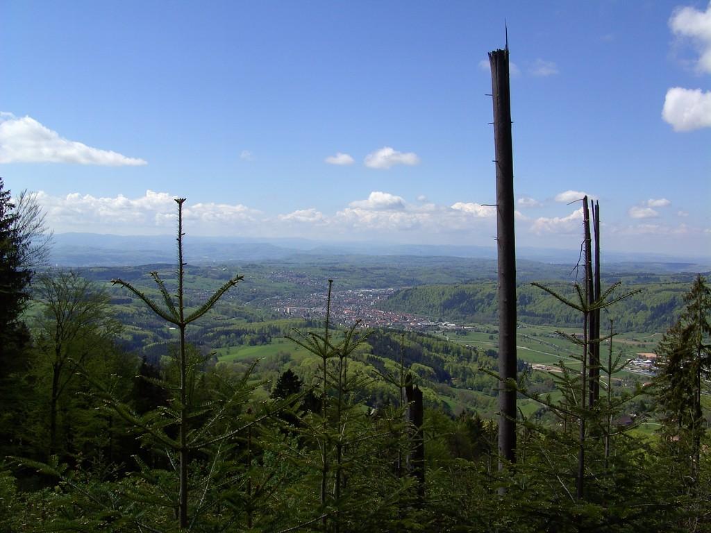 Dritte Rast - gute Aussicht dank Sichtrodung  ©  Hartmut Hermanns