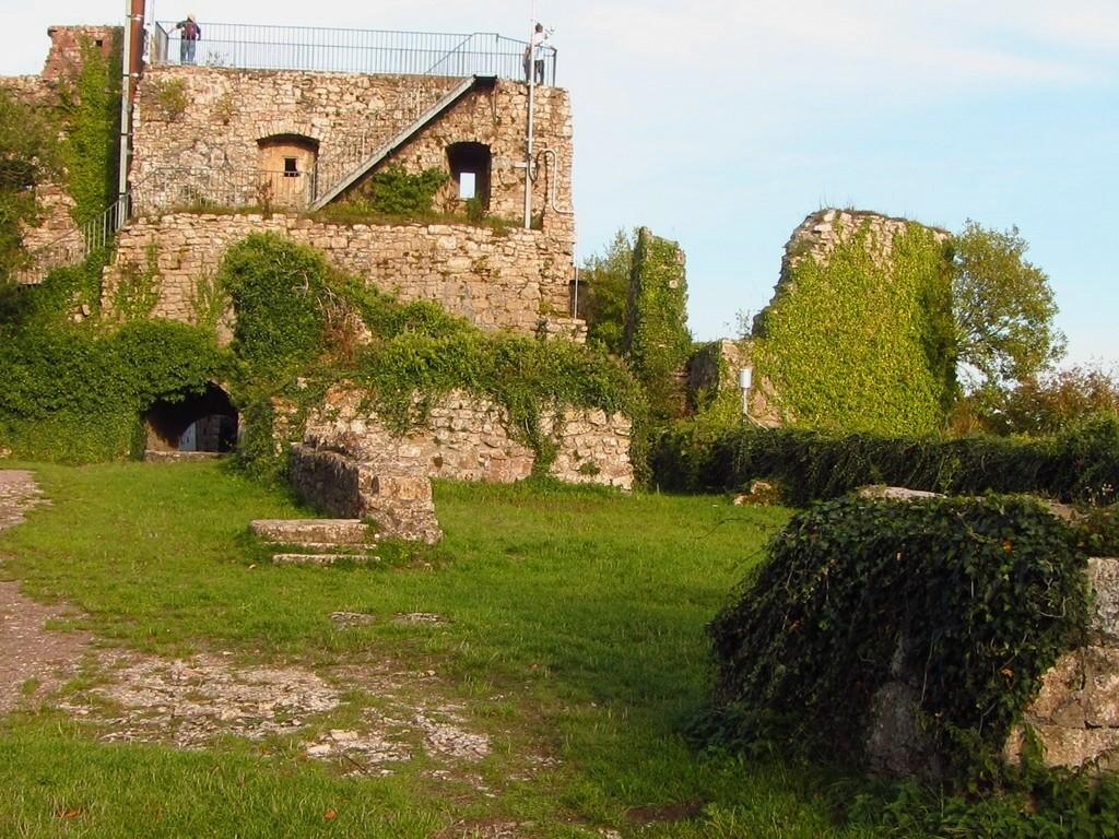 Ruine Küsssaburg   © Hartmut Hermanns