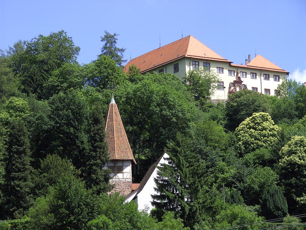 Schloss Neuenbürg von der Enz aus                                       © Hartmut Hermanns