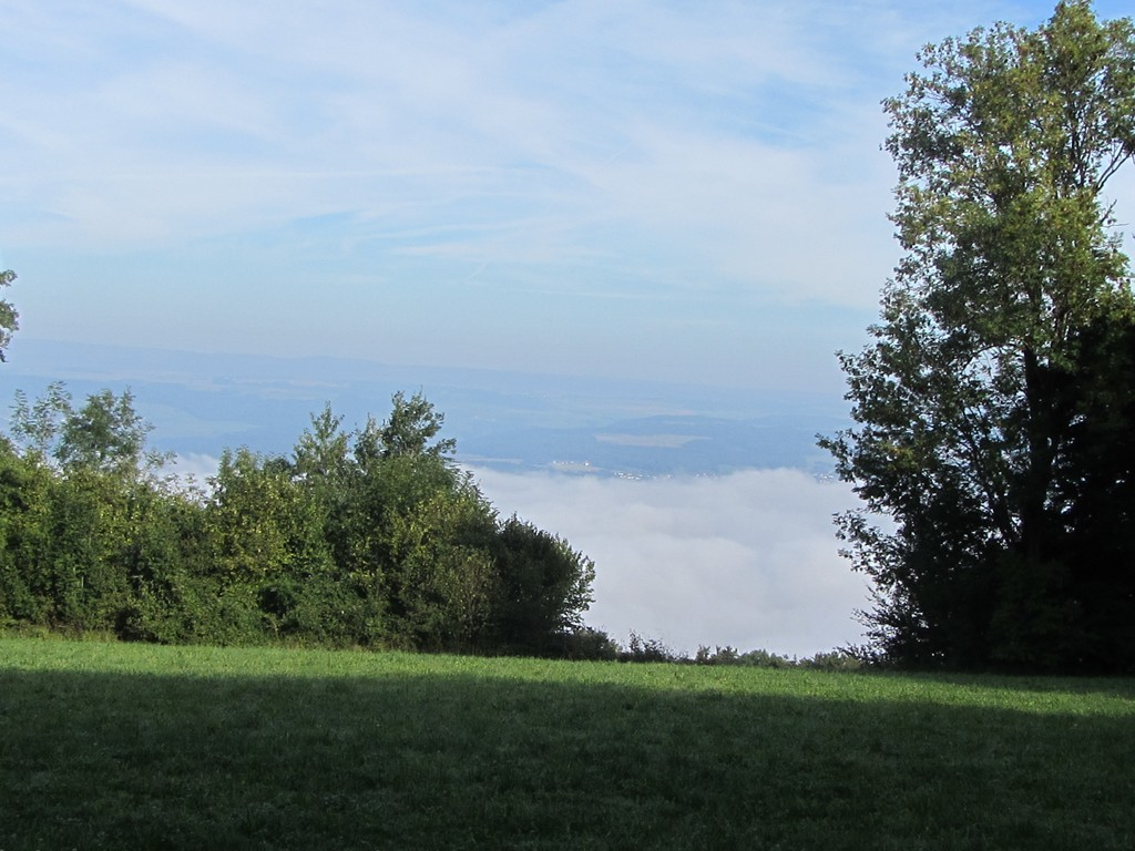 Klettgau im Nebel  © Hartmut Hermanns
