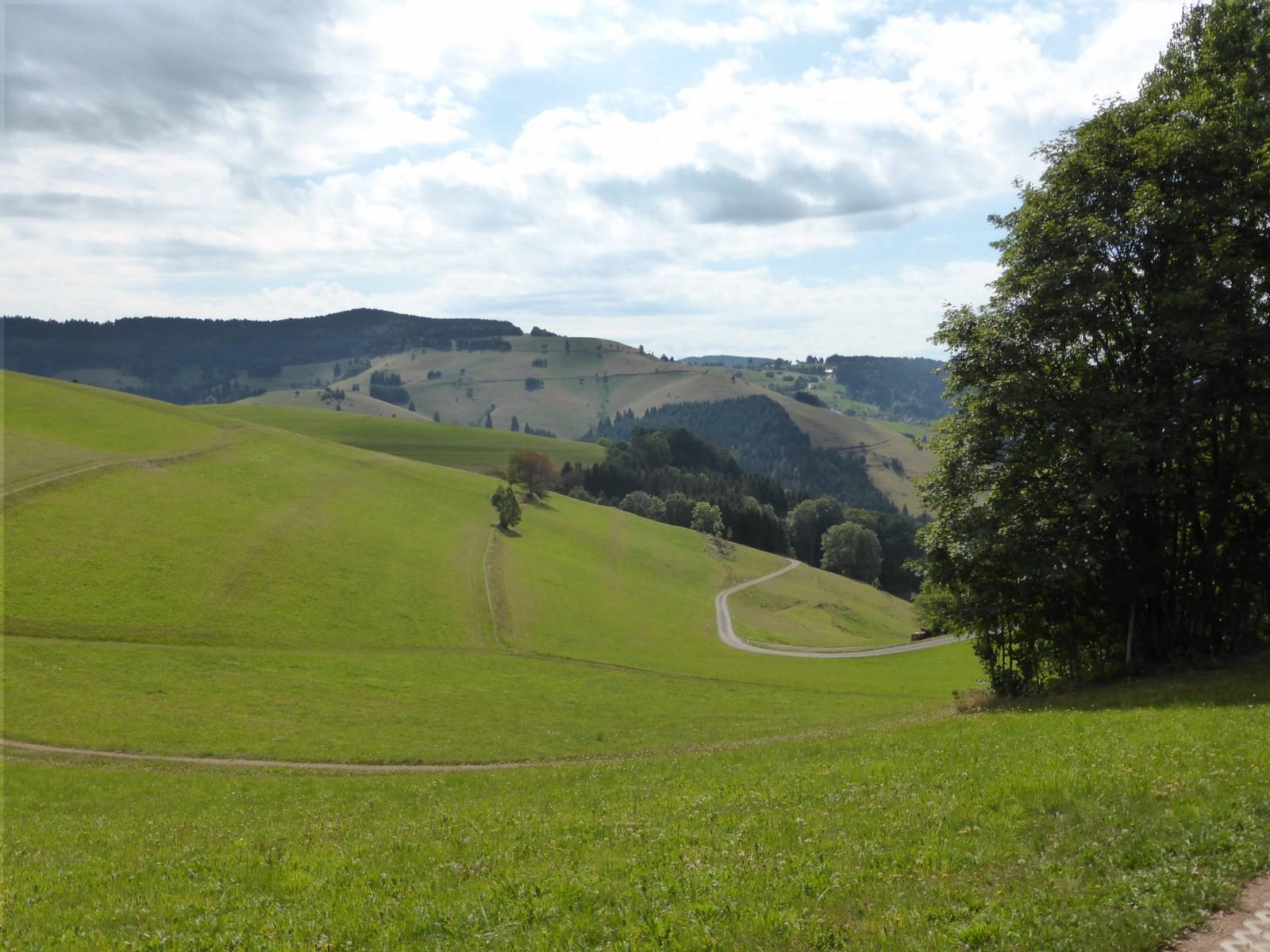 Blick auf Ehrsberg   © Hartmut Hermanns