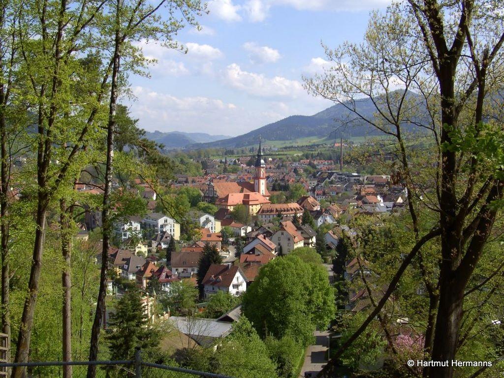 Blick auf Waldkirch   © Hartmut Hermanns