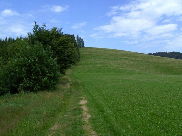 Abstieg nach Schlechtbach     © Hartmut Hermanns