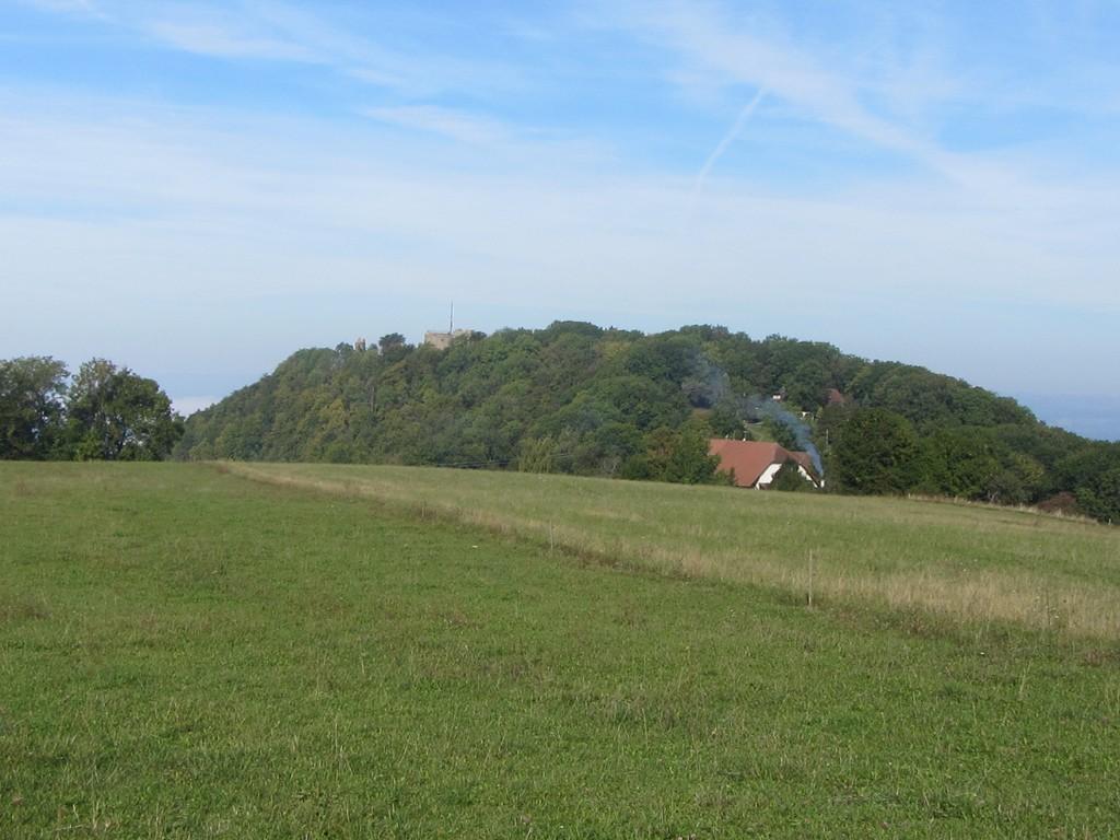 Rückblick auf die Küssaburg © Hartmut Hermanns
