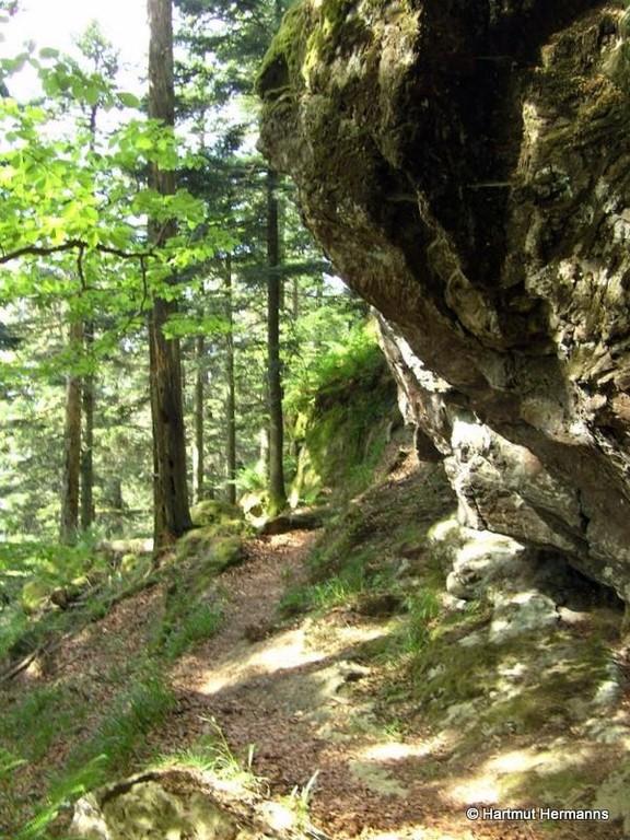 Steig unterhalb des Spitzen Steins   © Hartmut Hermanns