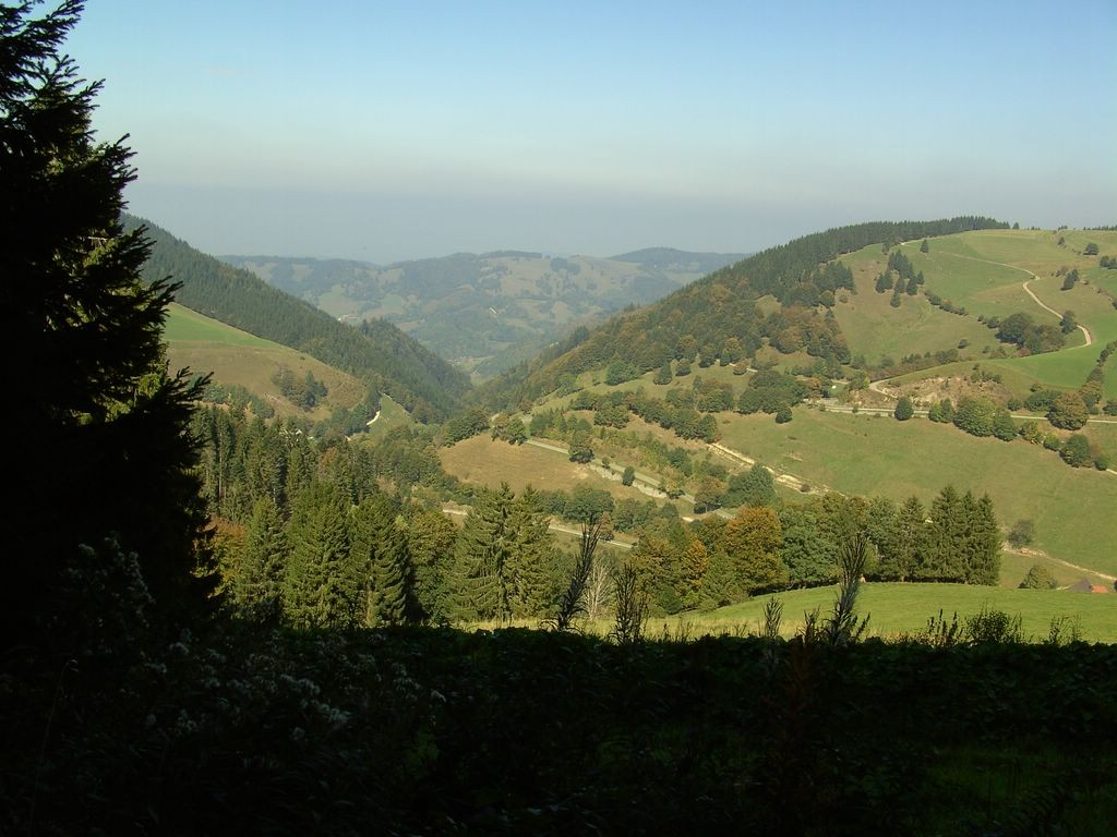 Blick auf Neuhof