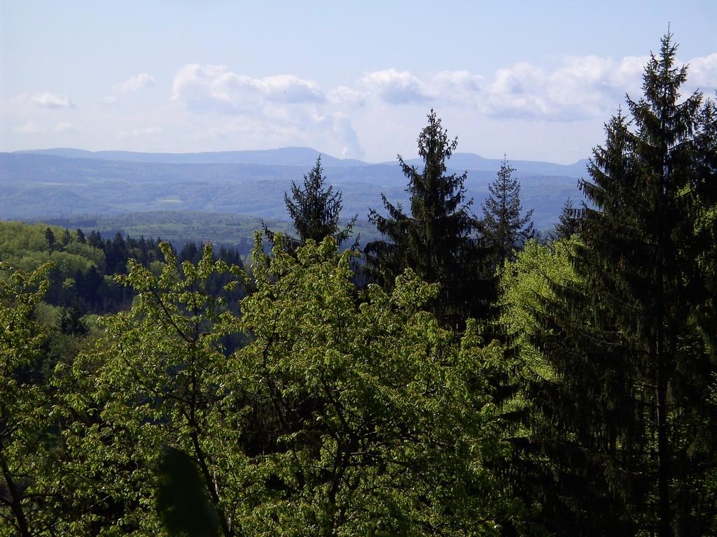 Aussicht am Blaßberg   ©  Hartmut Hermanns