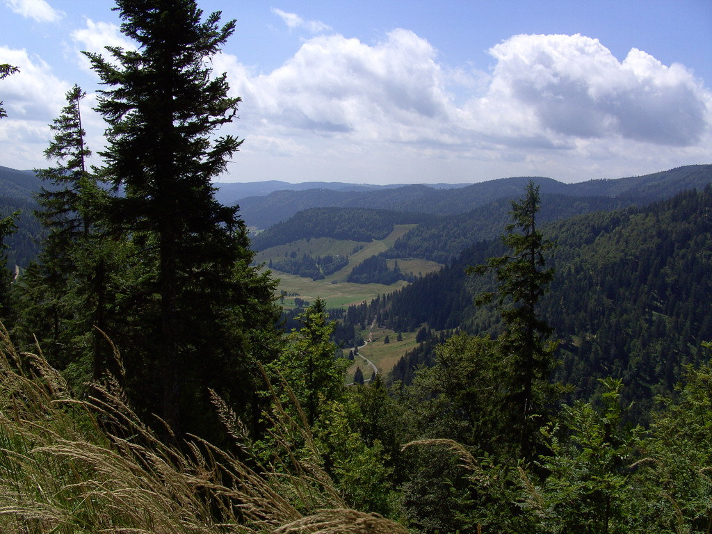 Menzenschwander Tal   © Hartmut Hermanns