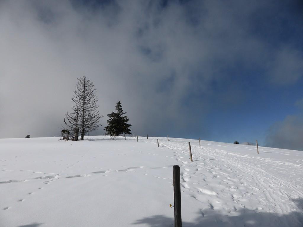 © Weg zum Gipfel Hartmut Hermanns