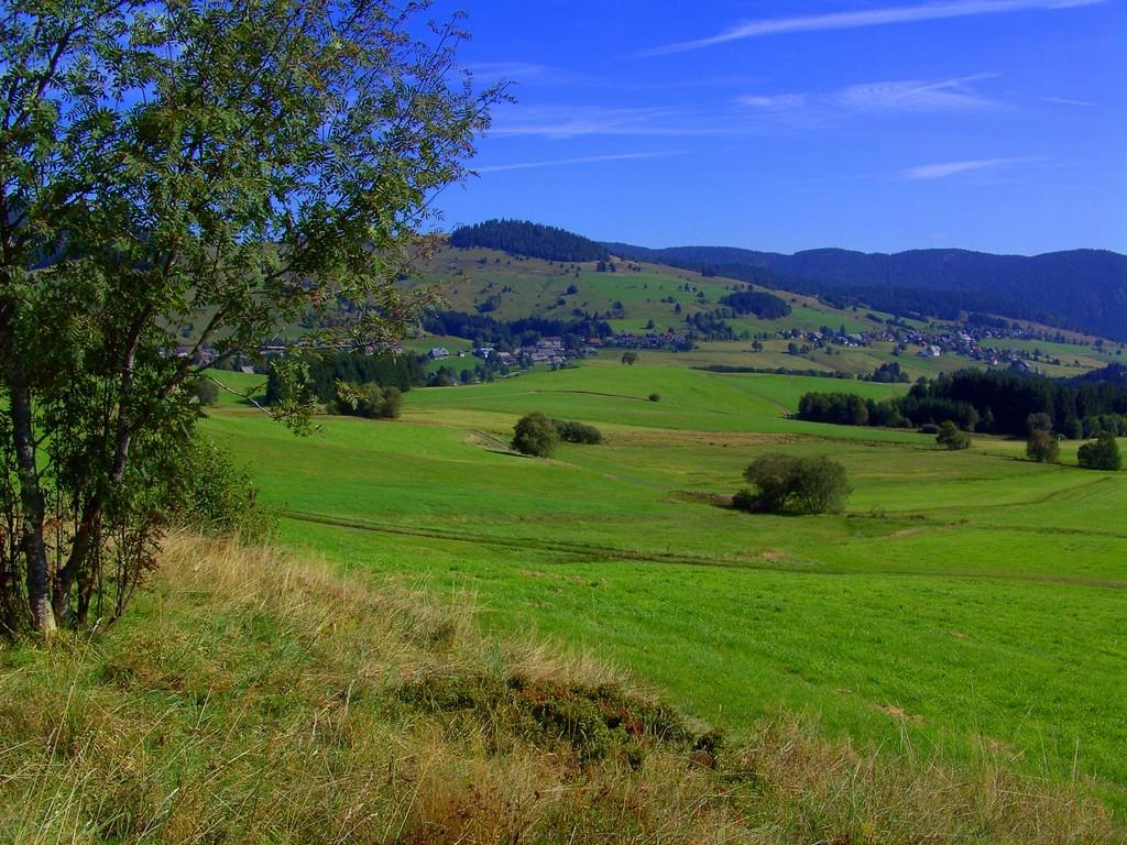 Blick zum Kaiserberg  © Hartmut Hermanns