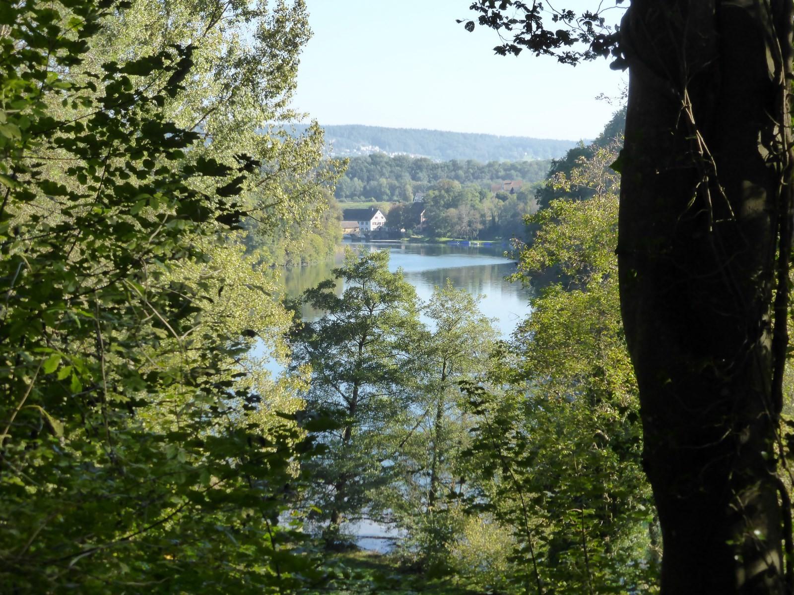 Erster Blick auf den Rhein C Hartmut Hermanns