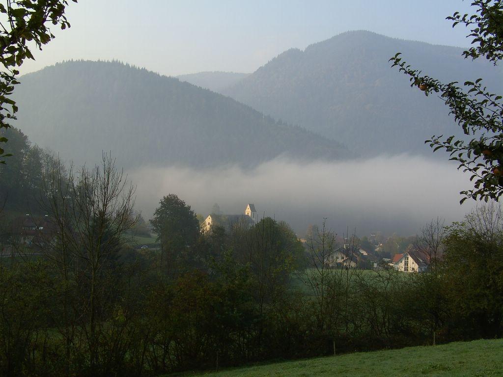 Aufstieg von Simonswald im Herbst © Hartmut Hermanns
