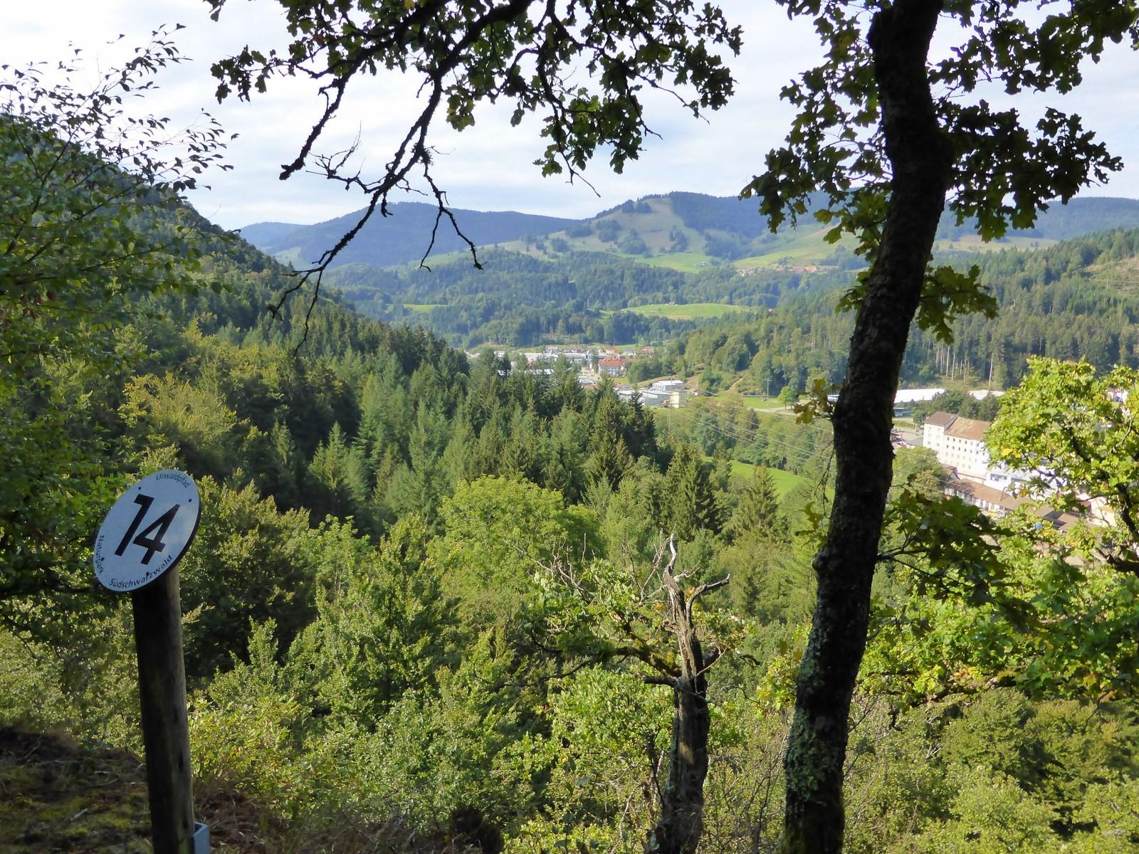 Anstieg auf dem Urwaldpfad © Hartmut Hermanns