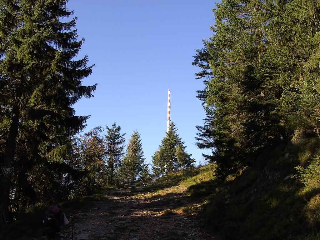 Aufstieg zur Hornisgrinde  © Hartmut Hermanns