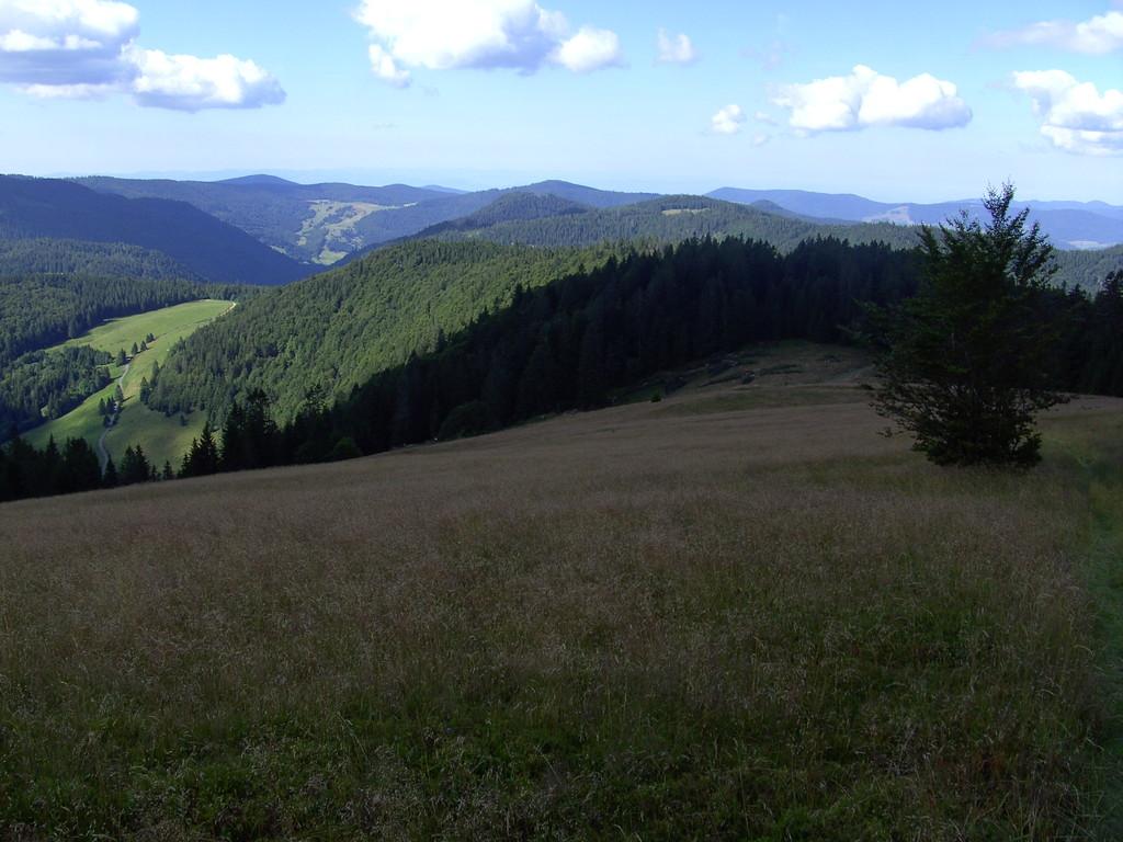 Blick vom Herzogenhorn nach S   © Hartmut Hermanns