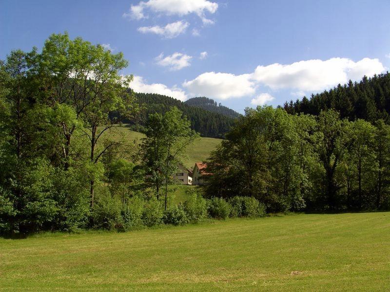 Im Simonswäldertal - Blick nach NO