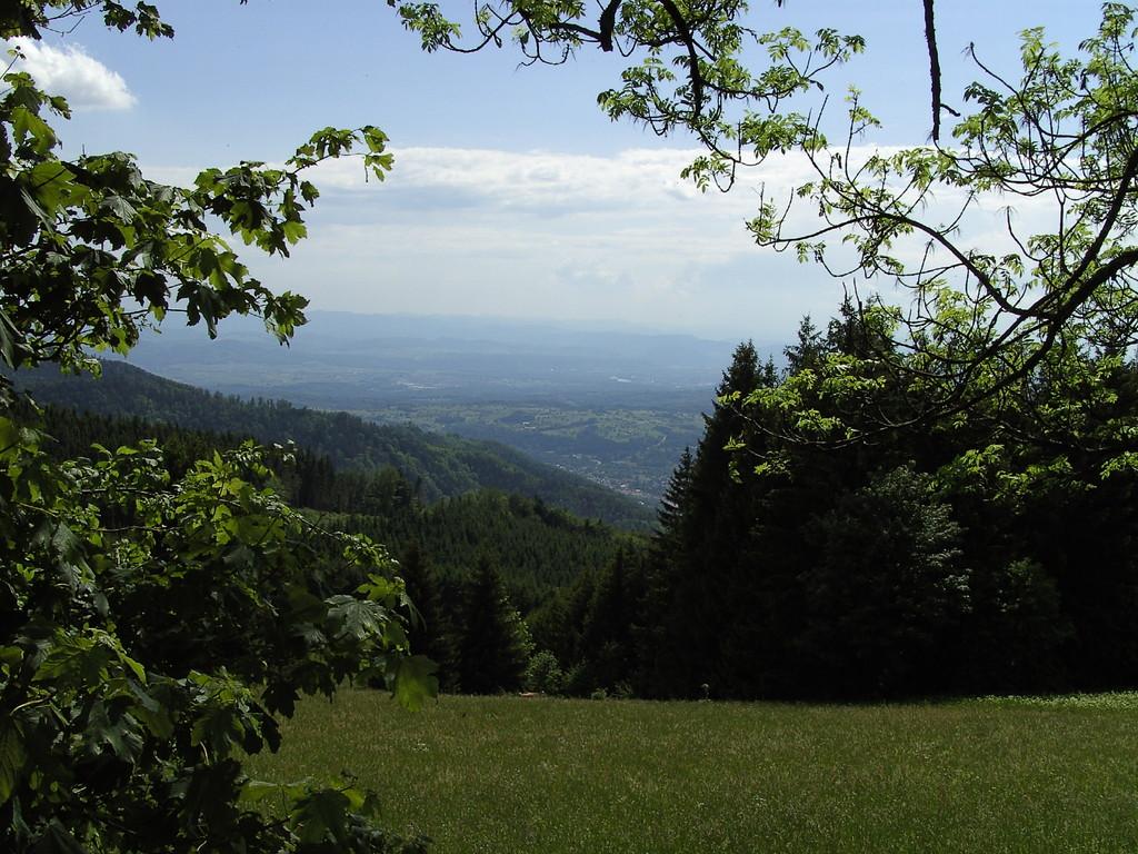 Blick hinab auf den Dinkelberg   © Hartmut Hermanns