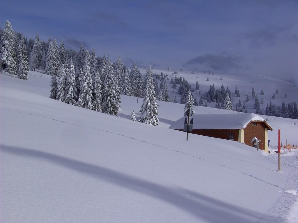 An der Todtnauer Hütte © Hartmut Hermanns