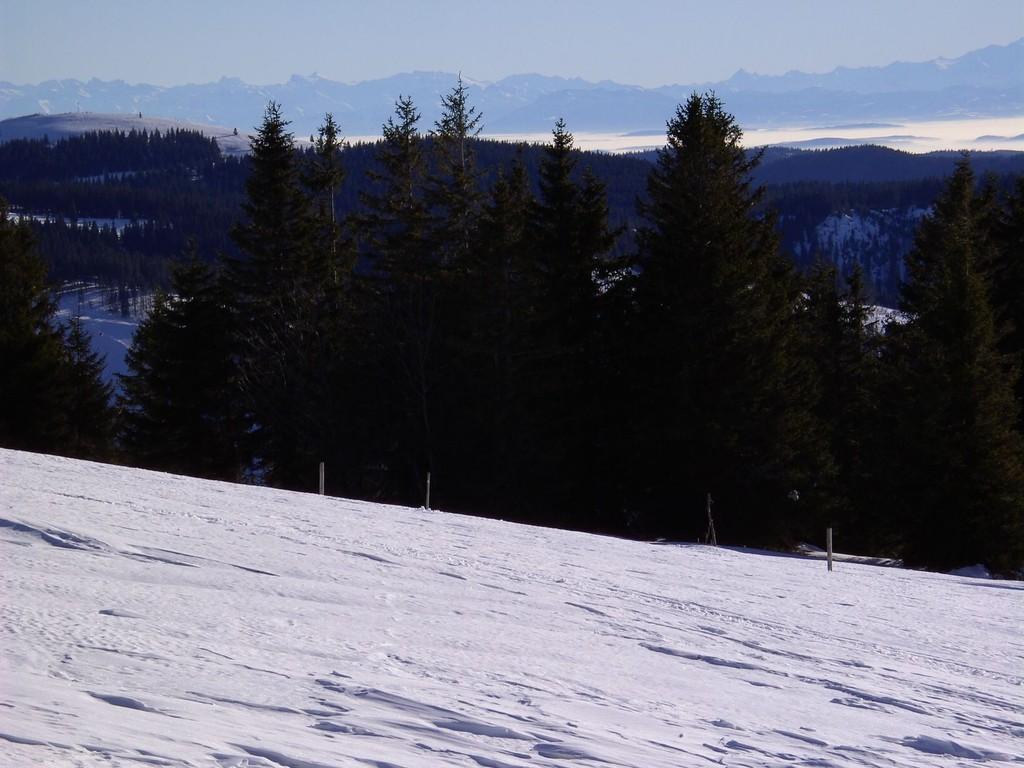 Blick zum Herzogenhorn
