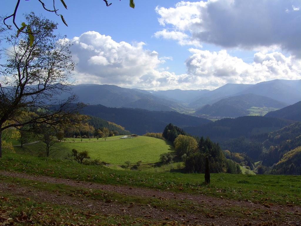 Blick auf das Simonswälder Tal   © Hartmut Hermanns