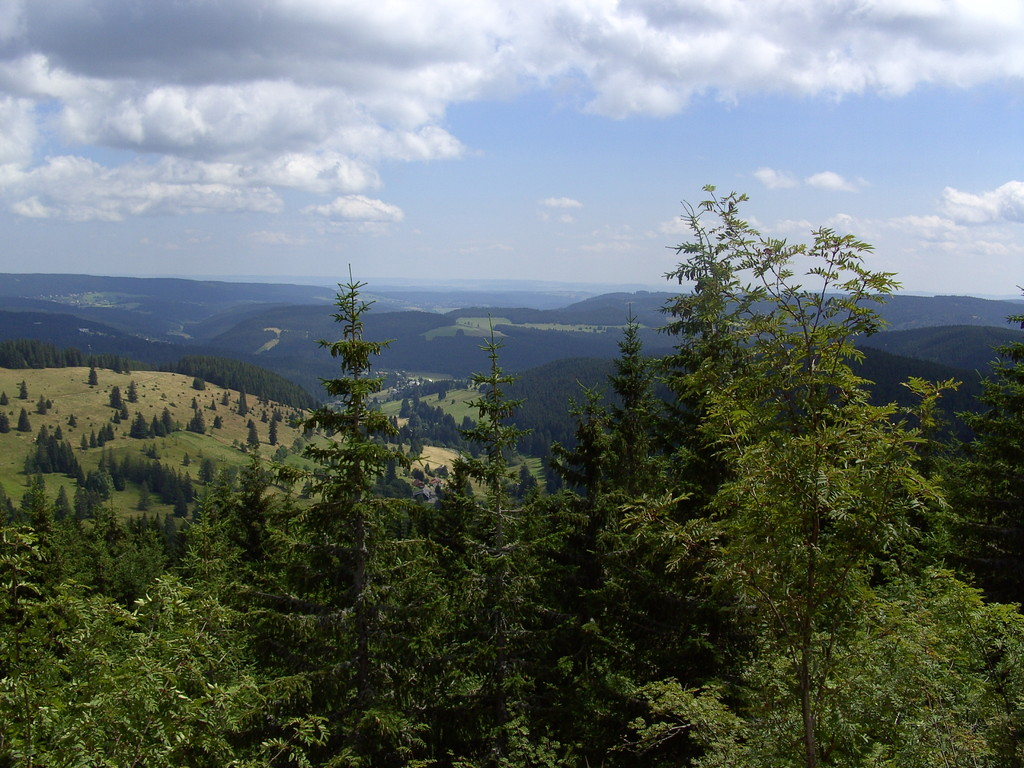 Panoramablick vom Zweiseenblick auf den Titisee