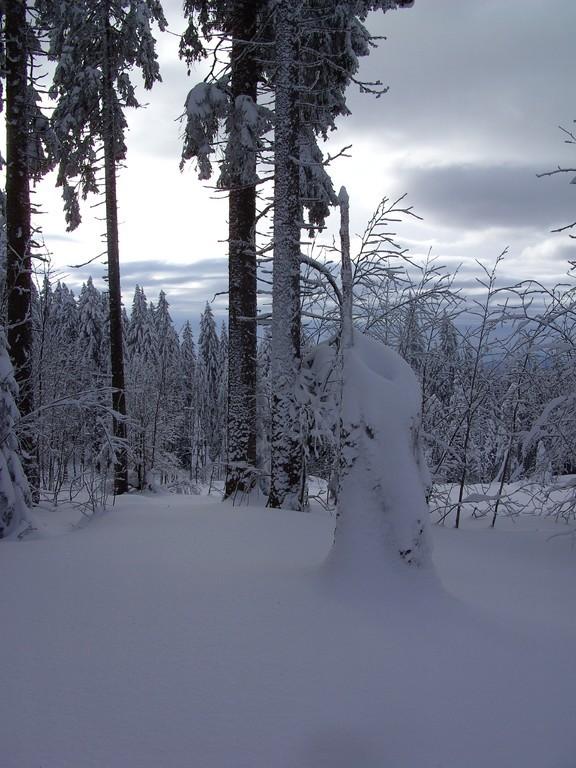 Schneeskulptur  © Hartmut Hermanns